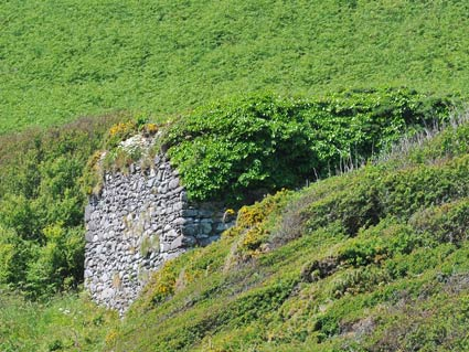 Lime Kiln at Caerbwdy Bay?