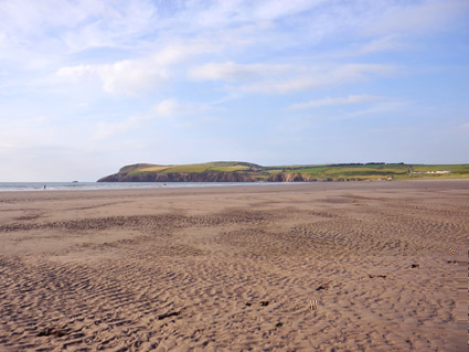 Morfa Headland from the beach
