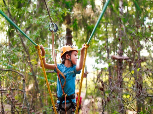 Tree Tops Adventure Trail